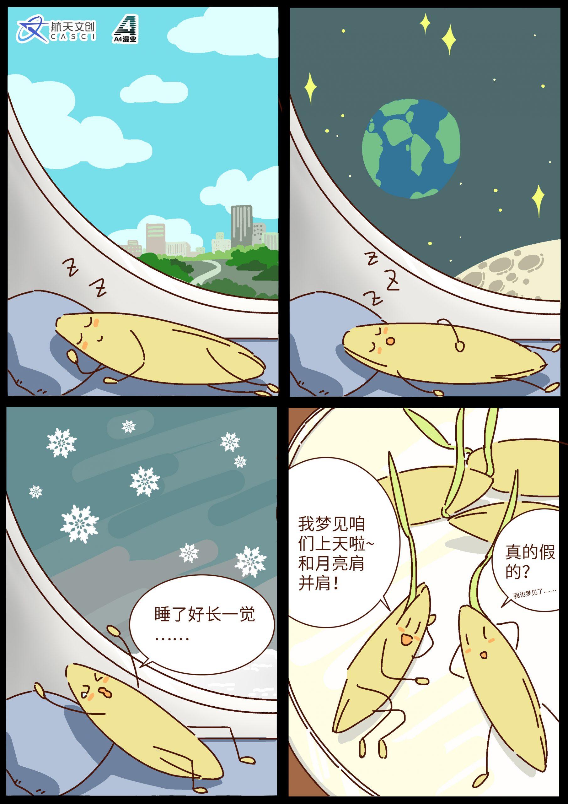 """乘嫦娥五号""""奔月""""的水稻种子发!芽!了!"""